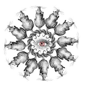 Rattenkonig